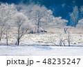 樹氷 シカ エゾシカの写真 48235247