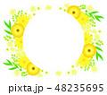 花 黄色 ベクターのイラスト 48235695