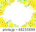 花 黄色 ベクターのイラスト 48235699