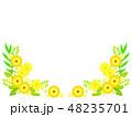 花 黄色 ベクターのイラスト 48235701