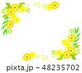花 黄色 ベクターのイラスト 48235702