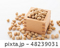 大豆 炒り豆 節分の写真 48239031