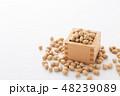 大豆 炒り豆 節分の写真 48239089