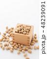 大豆 炒り豆 節分の写真 48239091