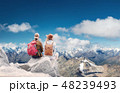 Travelers couple look at the mountains landscape. 48239493
