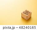 大豆 炒り豆 節分の写真 48240165