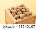 大豆 炒り豆 節分の写真 48240167