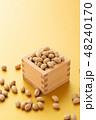 大豆 炒り豆 節分の写真 48240170