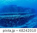 与那国島 海底遺跡 48242010