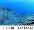 与那国島 海底遺跡 48242238