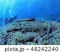 与那国島 海底遺跡 48242240