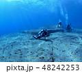 与那国島 海底遺跡 48242253