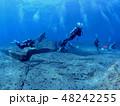 与那国島 海底遺跡 48242255