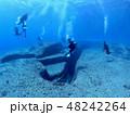 与那国島 海底遺跡 48242264