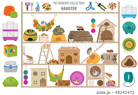 Pet rodents home accessories icon set flat style 48245472