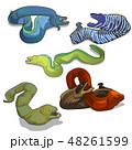マンガ 漫画 多彩のイラスト 48261599