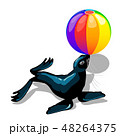 Circus animal sea lion with colorful ball isolated on white background. Vector cartoon close-up 48264375