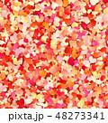 カラー 色 色彩のイラスト 48273341