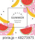 フルーツ 果物 背景のイラスト 48273975