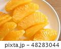 果肉 果物 八朔の写真 48283044