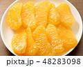 果肉 果物 八朔の写真 48283098