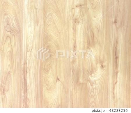 Hardwood maple basketball 48283256