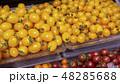 ミニイエロートマト  48285688
