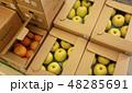 ダンボール箱のフルーツ 王林 ハッサク 48285691