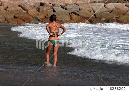 海水浴・夏だ~ 48288202