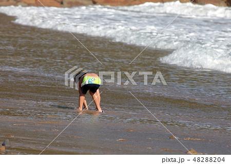 海水浴・夏だ~ 48288204