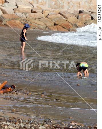 海水浴・夏だ~ 48288205