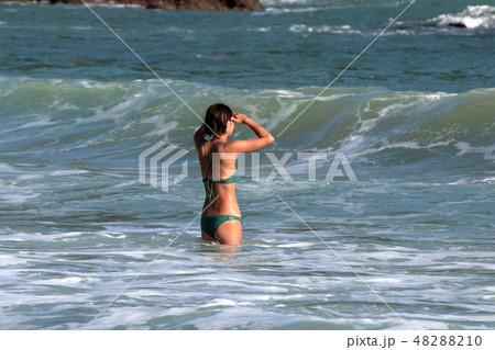 海水浴・夏だ~ 48288210