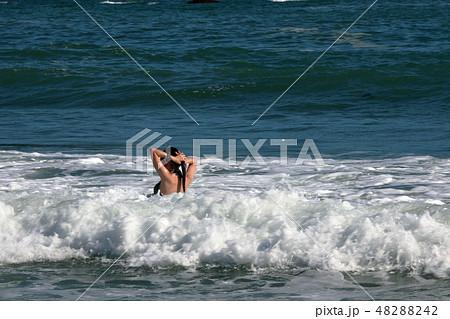 海水浴・夏だ~ 48288242