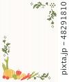 フレーム 野菜 食材のイラスト 48291810