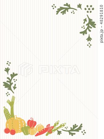 野菜のフレーム 48291810