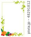 フレーム 野菜 食材のイラスト 48291812