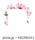 花 フレーム 水彩画のイラスト 48296441
