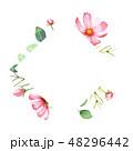 花 フレーム 水彩画のイラスト 48296442