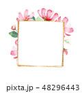 花 フレーム 水彩画のイラスト 48296443