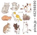 猫 動物 種類のイラスト 48298890