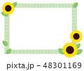 夏 花 向日葵のイラスト 48301169