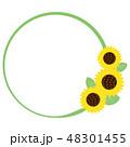 夏 花 向日葵のイラスト 48301455