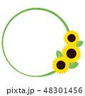 夏 花 向日葵のイラスト 48301456