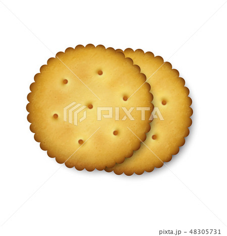 Realistic Vector 3d Round Delicious Salty Cookies Rustic, Cracker, Biscuit Set Closeup Isolated on 48305731