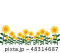 ひまわりフレーム・背景 48314687