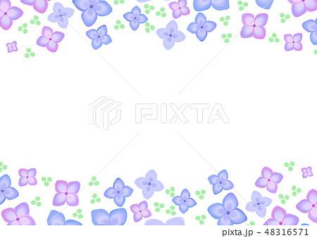 梅雨 花 紫陽花 6月 上下 フレームのイラスト素材