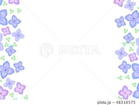 梅雨 花 紫陽花 6月 縦フレームのイラスト素材