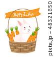EASTER イースター 復活祭のイラスト 48321650