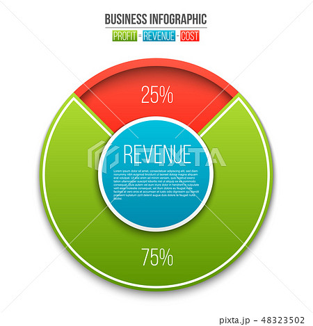 Creative vector illustration of revenue, profit, expenses diagram showing infographic isolated on 48323502