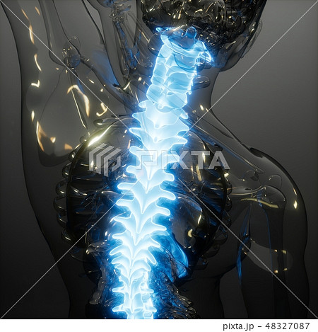 Backache in Back Bones 48327087